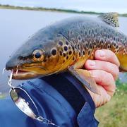 Рыболовные крючки  - лучшие цены,  высокое качество